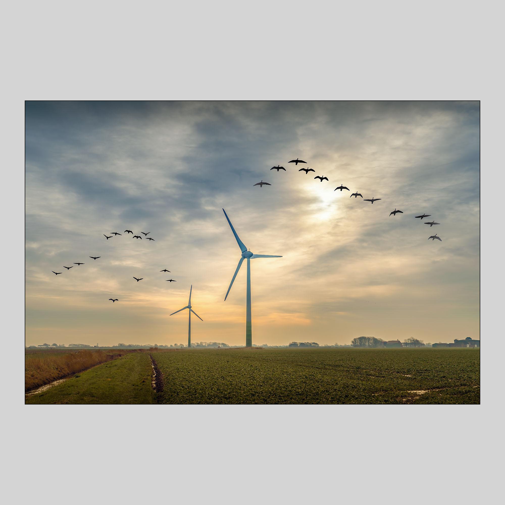 H-0017 Windräder ESK